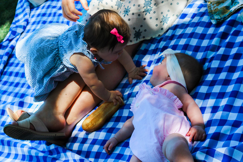 Picnic_in_the_Park-13