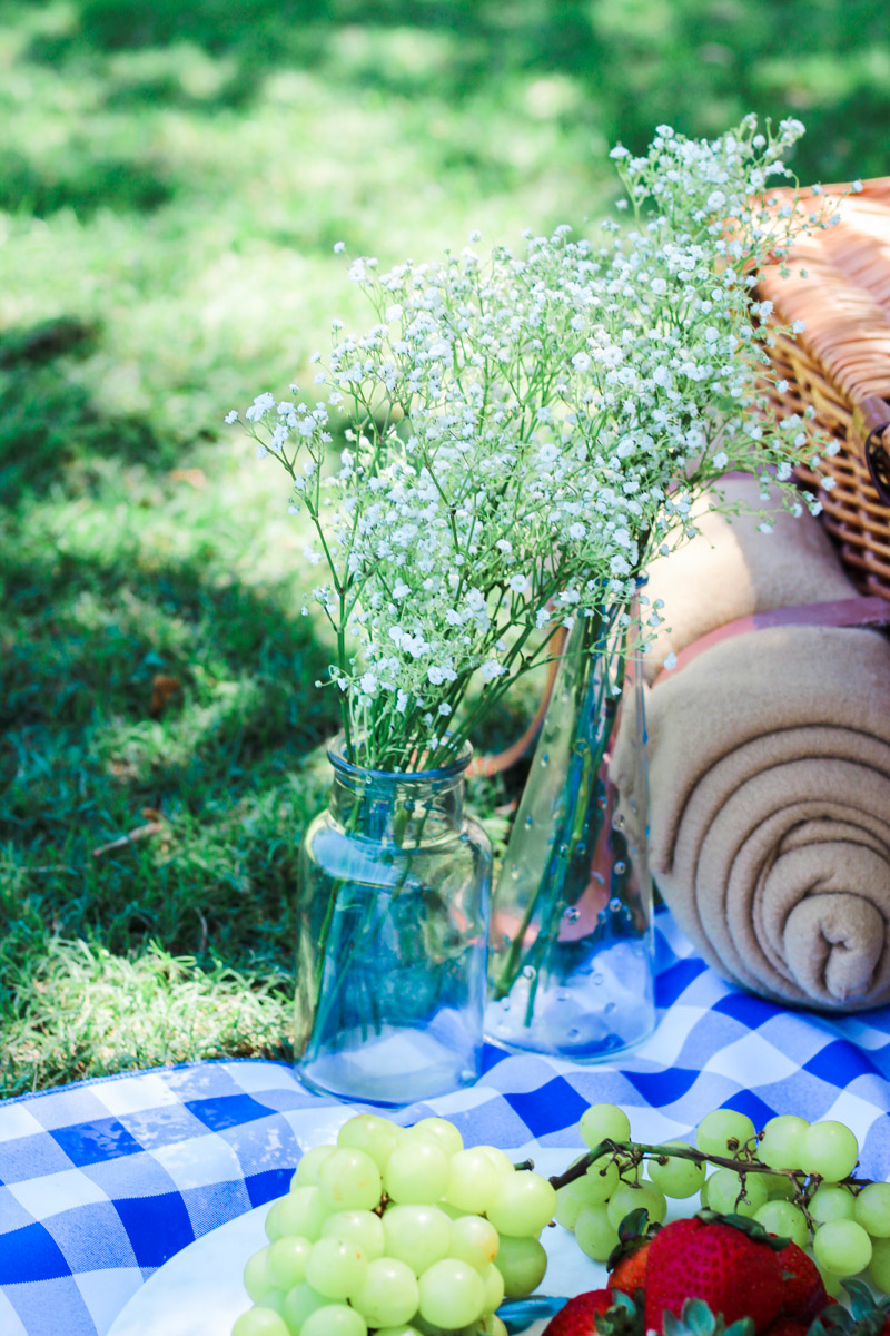 Picnic_in_the_Park-6