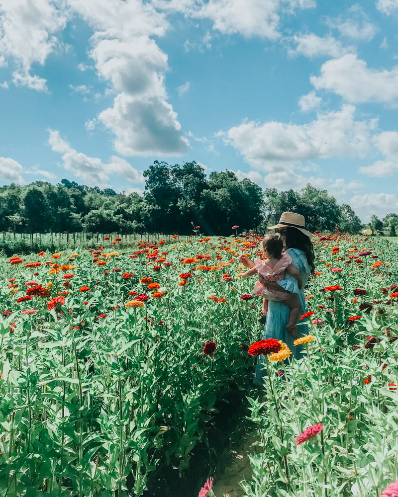 You Can Be a Good Mom & Follow Your Dreams | Lone Star Looking Glass